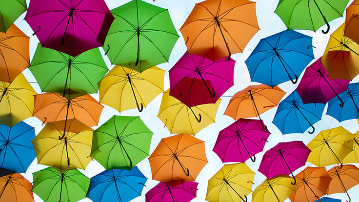 Canzone Group Insurance Agency - Business Umbrella Insurance
